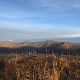 Stage trail - vue massif Cantal